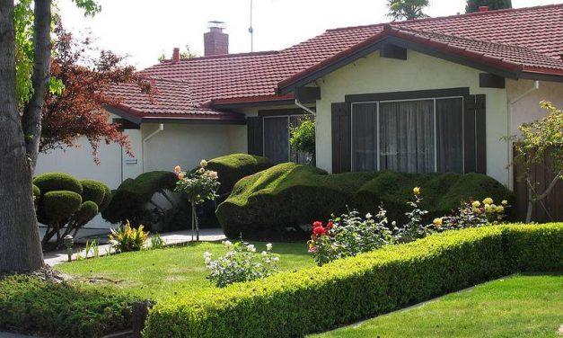 ¿Cómo preparar el jardín para el verano?
